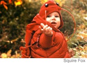 Babies Lobster Costume
