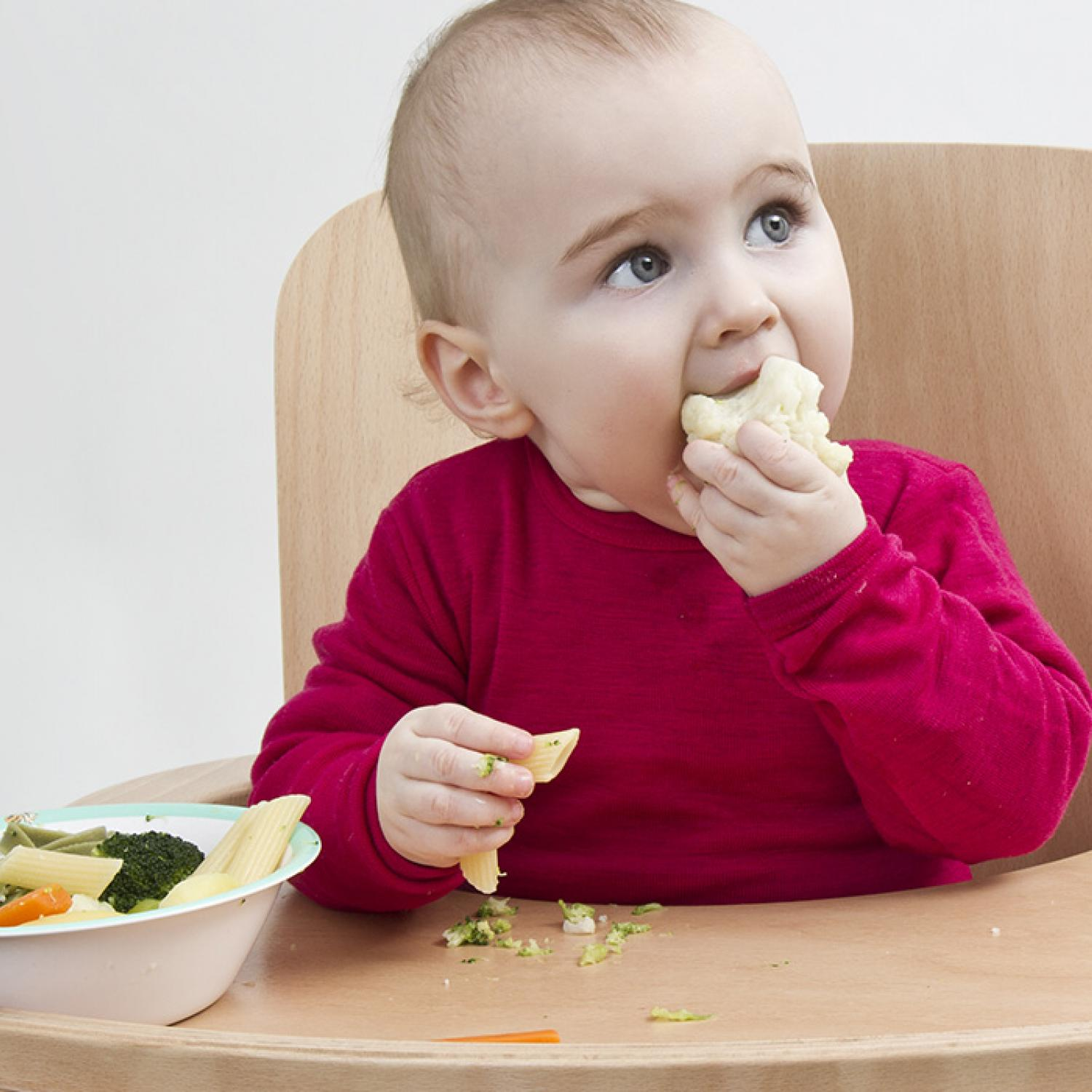 Babyled Weaning  Parenting. Universal Business Listings Dennis Buys Cars. To Kill A Mockingbird Closing Argument. Church Audio Video Systems Get Business Leads. Inca Art And Architecture Gw Human Resources. Options Calculator Profit Internet In Detroit. Intuit Online Backup Service. How To Become And Accountant Crm Stand For. Best Internet Monitoring Software