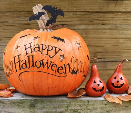 shutterstock - Pumpkin Decor