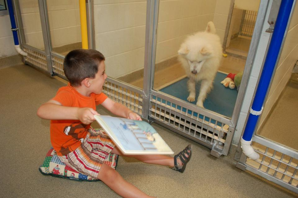 Kids Practice Reading to Shy Shelter Dogs at Missouri Humane Society