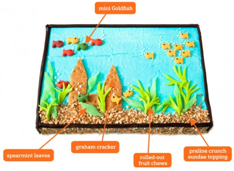fish tank cake anatomy