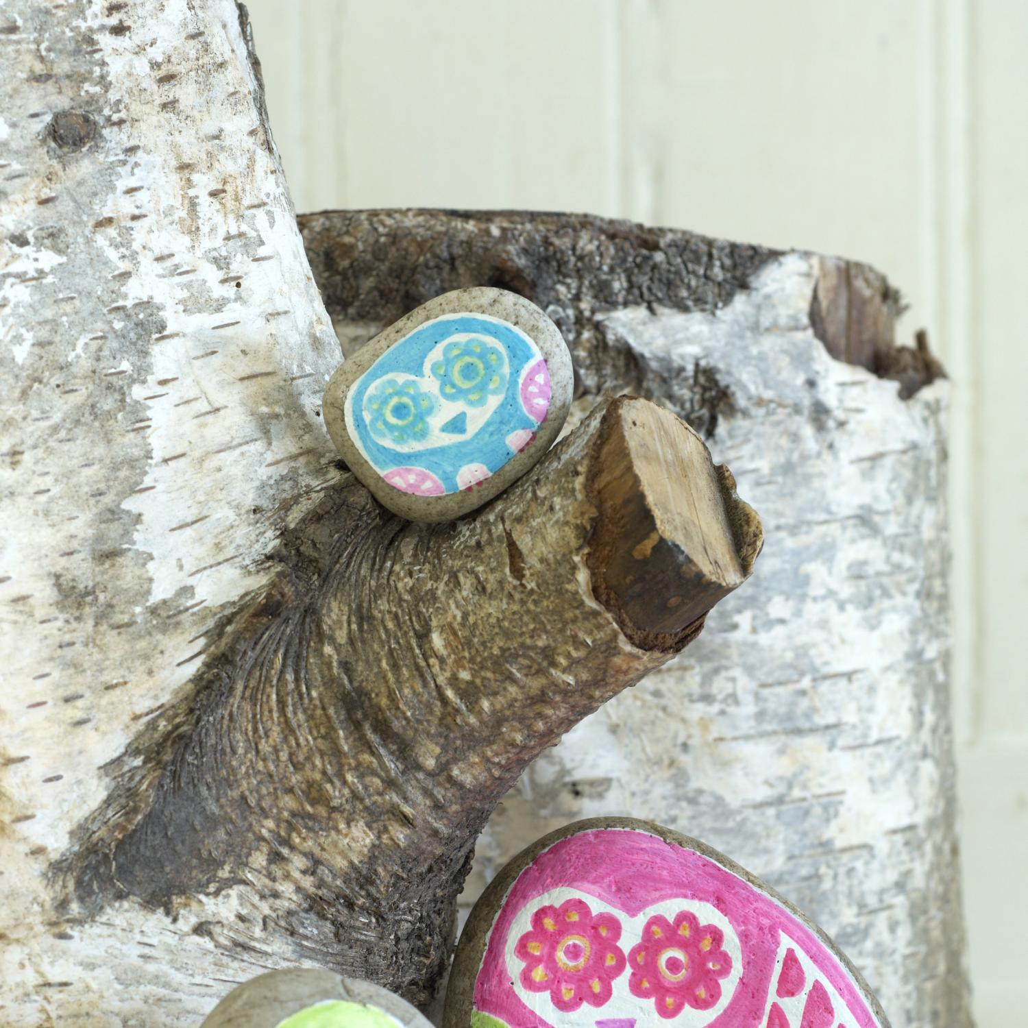 Painted Rock Craft