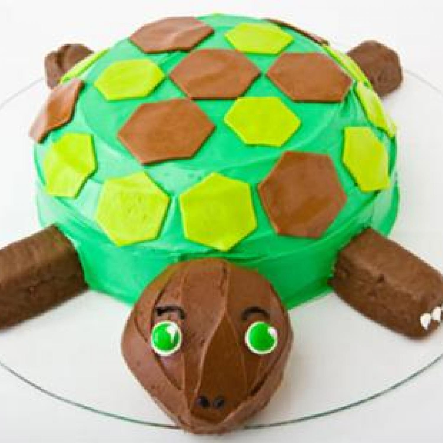 Turtle Birthday Cake Design Parenting