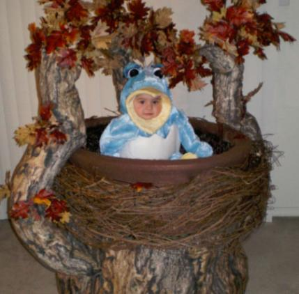Here is a picture of my 1-year-old daughter Katherina. She is dressed as a baby bluebird hatching out of her egg. She is sitting in a birdu0027s nest resting ...  sc 1 st  Parenting & Homemade Halloween Costume Contest Top 10 | Parenting