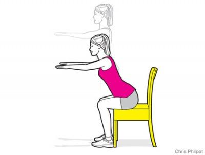 Chair Squat Diagram Search For Wiring Diagrams